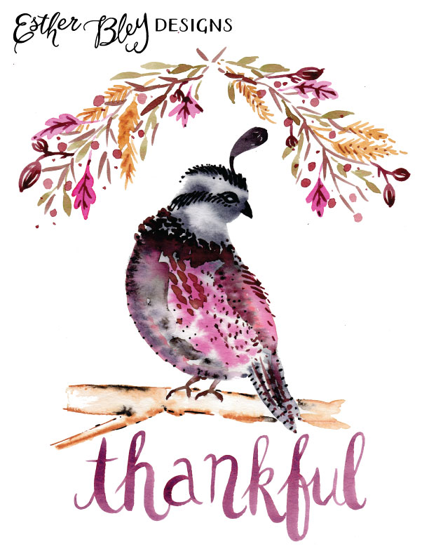 estherbley_thankfulquail