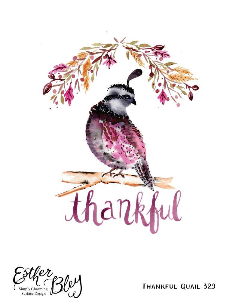 thankfulquail-01