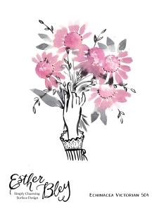 EchinaceaHands-01