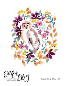 Owl-01